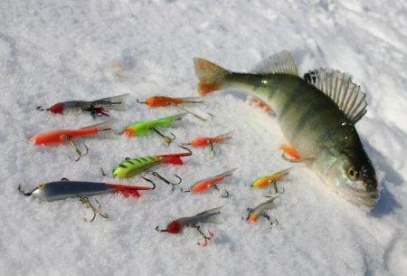 Как поймать окуня зимой